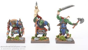 Vanguard Orcs Group